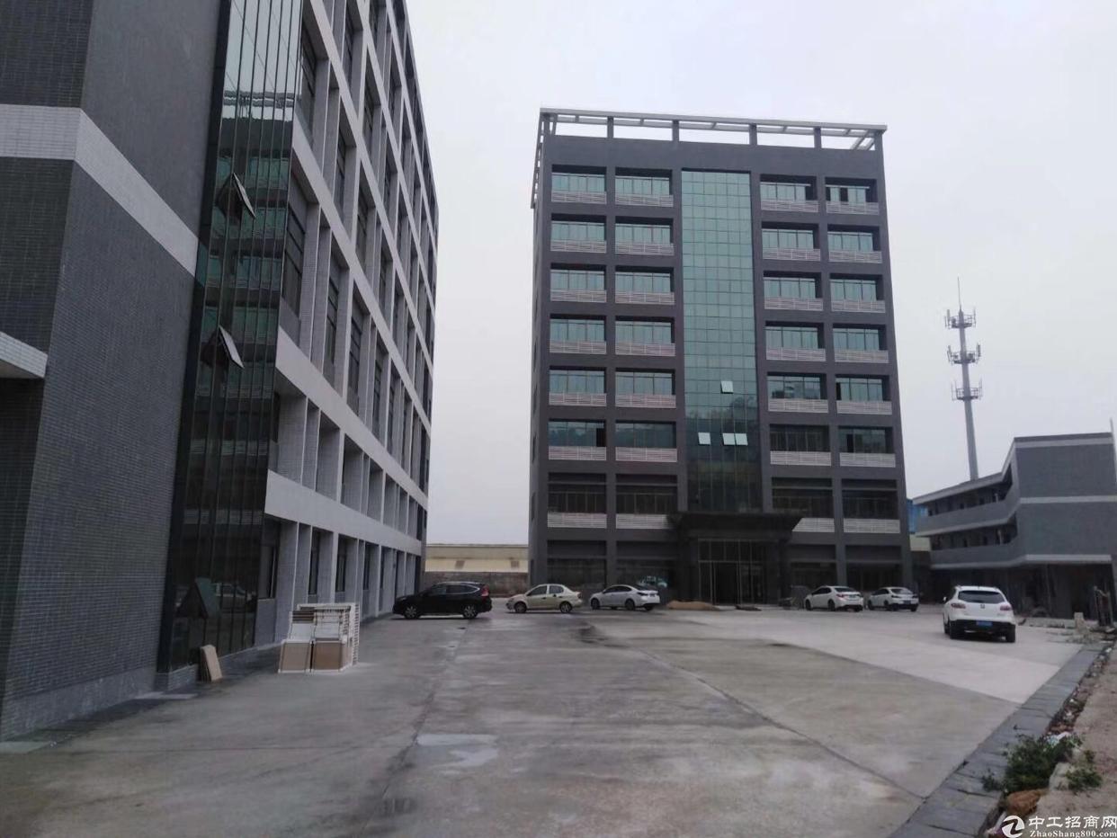 东莞清溪二个高速中间新出电商仓库上市公司厂房50000平可分