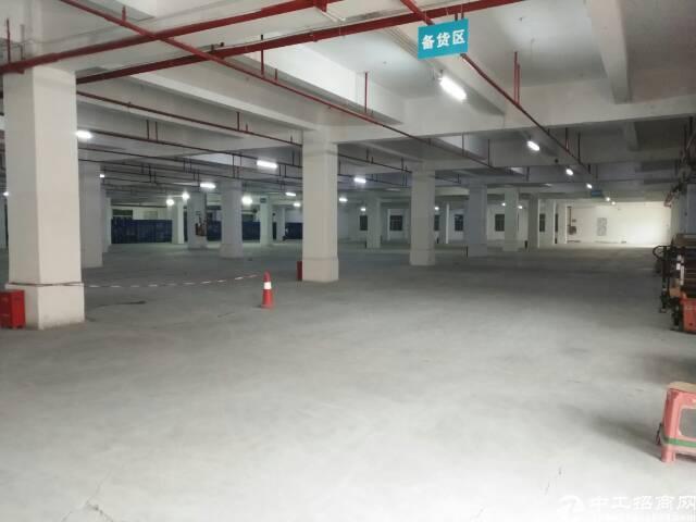 原房东一楼6600平方5米厂房低价招租