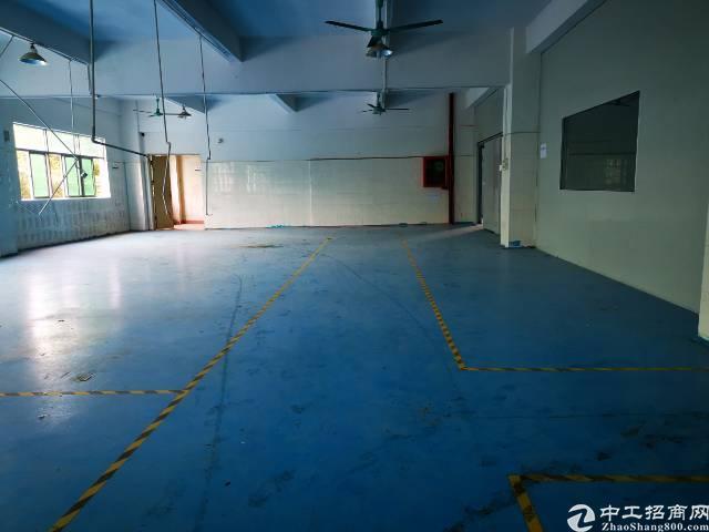 博惠阳深高速新圩出口独院厂房5000平方出租-图5