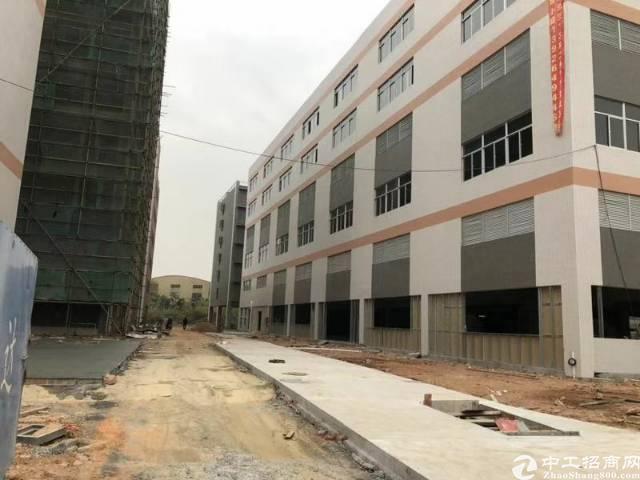 番禺南村新建18000方,厂房带证,可办环评可分租