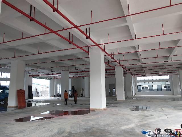 塘厦镇原房东彩虹工业园四楼五楼空出4200平方。