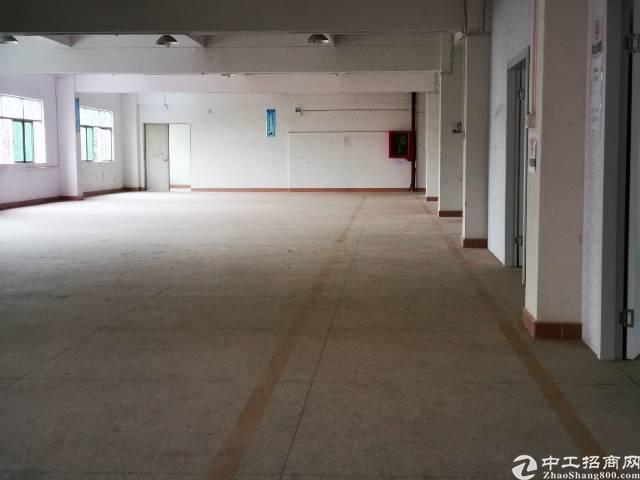 博惠阳深高速新圩出口独院厂房5000平方出租-图6