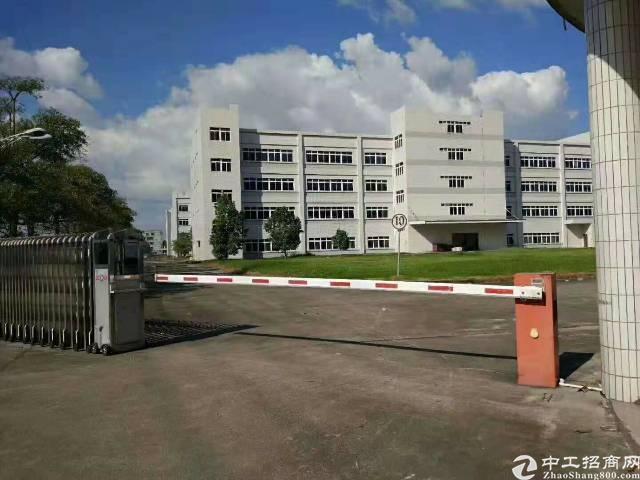 惠城区全新标准厂房低价出租9000平方