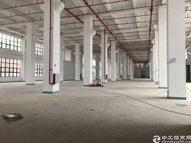 清溪镇带红本原房东独院标准厂房83186平米出租,可分租-图2