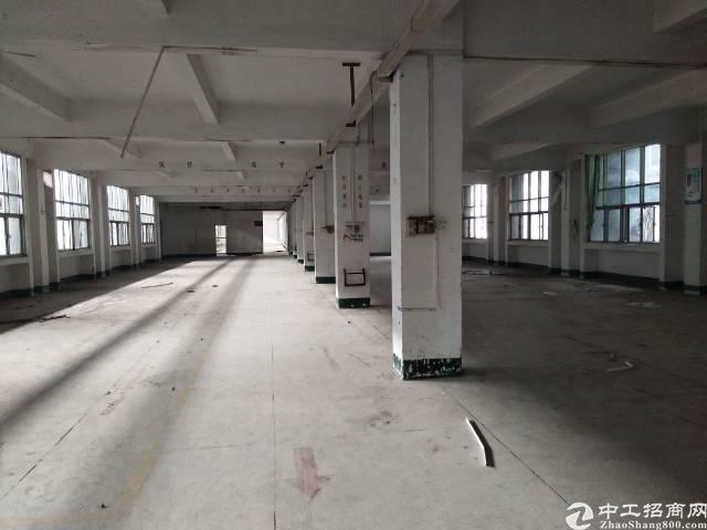 大朗镇实业客分租一栋标准厂房6000平方