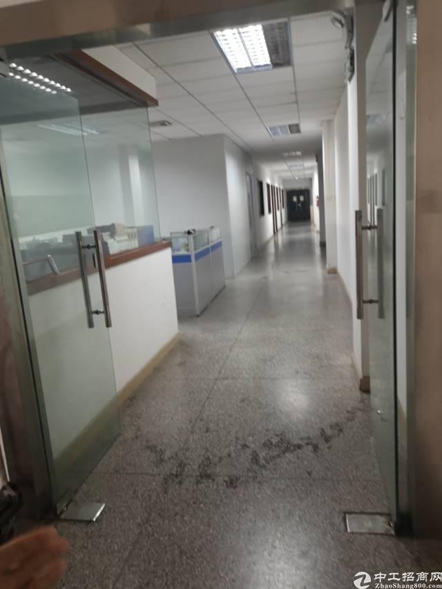观澜梅关高速旁新出精装修1300平厂房出租无需转让费-图3