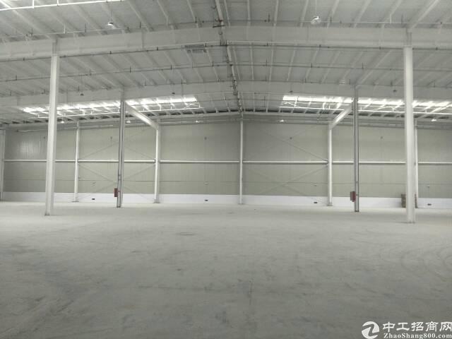 阳逻管委会15000平米钢结构标准库房出租,配套办公,宿舍。