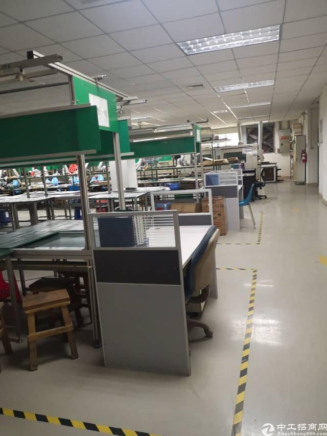 观澜梅关高速旁新出精装修1300平厂房出租无需转让费-图2