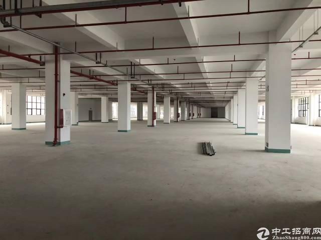 清溪镇带红本原房东独院标准厂房83186平米出租,可分租