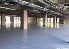 公明全新红本厂房1000平米出租
