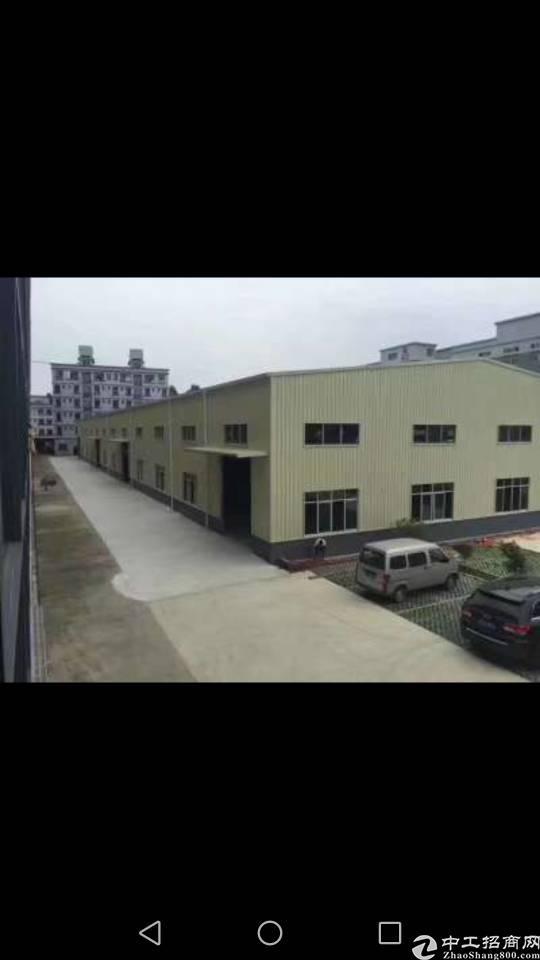 陈江占地3300,建筑3000厂房售价400万