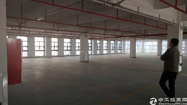 平湖华南城南门整层1200平方3吨电梯厂房出租