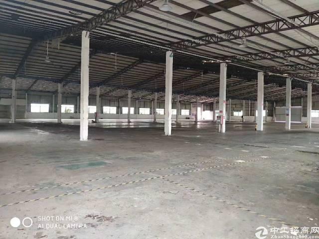 广州增城区新塘镇新出平地仓位置好空地大滴水10米-图4