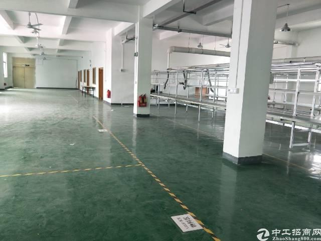 公明新围新出楼上1100平带装修厂房火爆招租