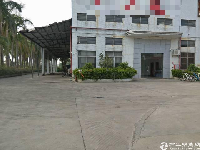 企石镇附近原房东独院钢构厂房1400平方滴水8米