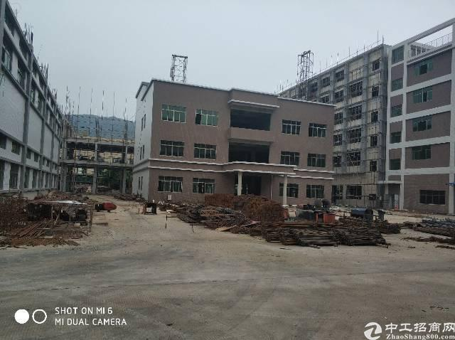 惠城区河南岸大路边原房东出去厂房4200平方