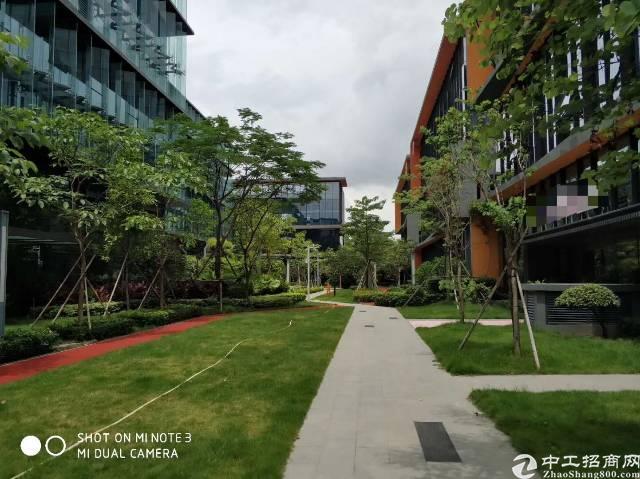 华南城旁高大上独院厂房30000平米出租适合做高端行业
