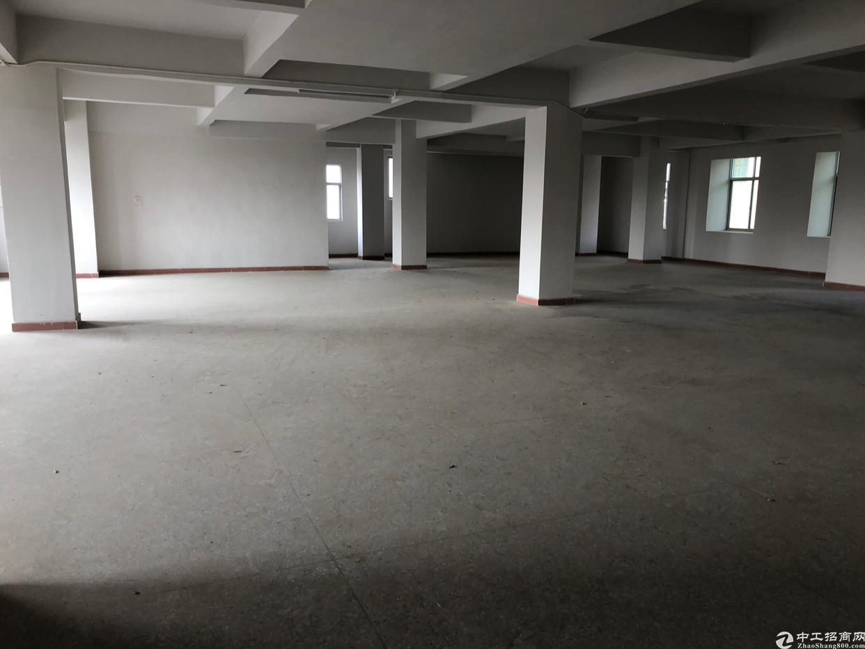 东莞市塘厦镇石马新出标准厂房楼上680平方-图3