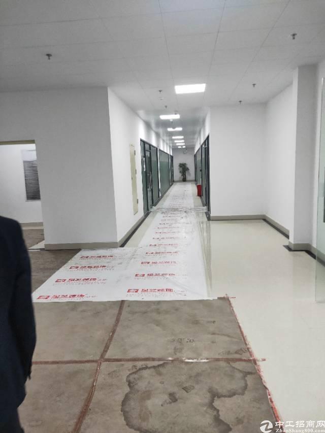 广州市黄埔区新开发东区二期产业开发区投资招租