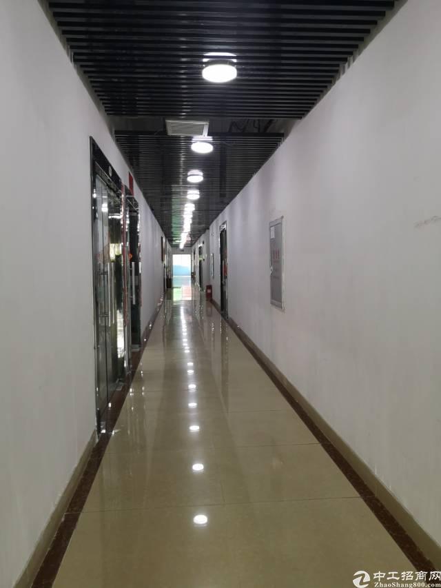 观澜新出59-118平方起租精装修写字楼办公室