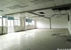 公明原房东带装修厂房出租1600平方米