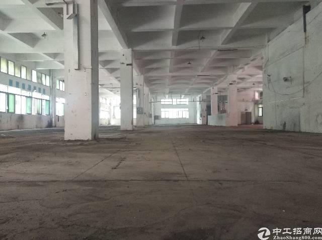 观澜新出红本厂房50000平出租,可分租-图6