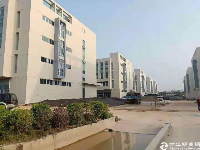 塘厦原房东新建红本厂房5栋,上市公司优先
