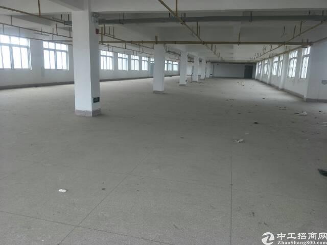 横店标准厂房每层2400平,可做仓库,轻加工