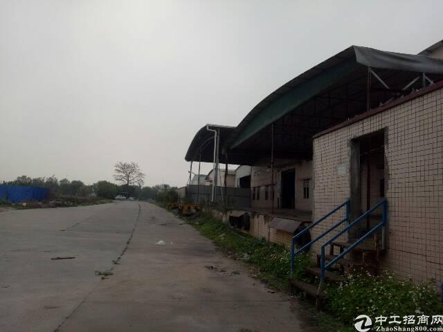 番禺石楼靠近坑头工业区附近一楼简易厂房5000平,可分租有证-图6