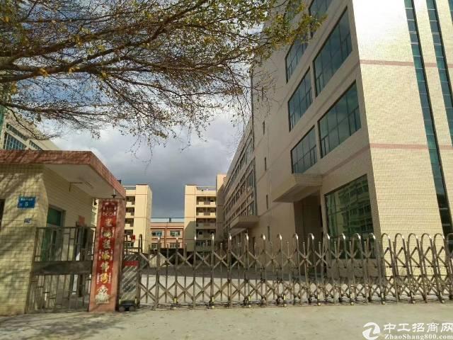 道滘全新标准产业园区,证件齐全,学校、医院、高新产业园福音