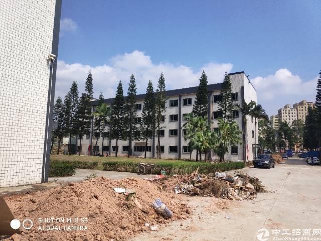 龙华油松花园式园区内小面积办公室招租面积52平方起租