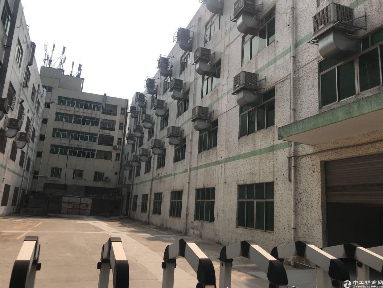 龙华独门独院1-4层6000平方