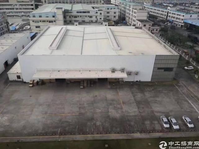 清溪镇标准物流仓库出租滴水12米丙二类双面卸货