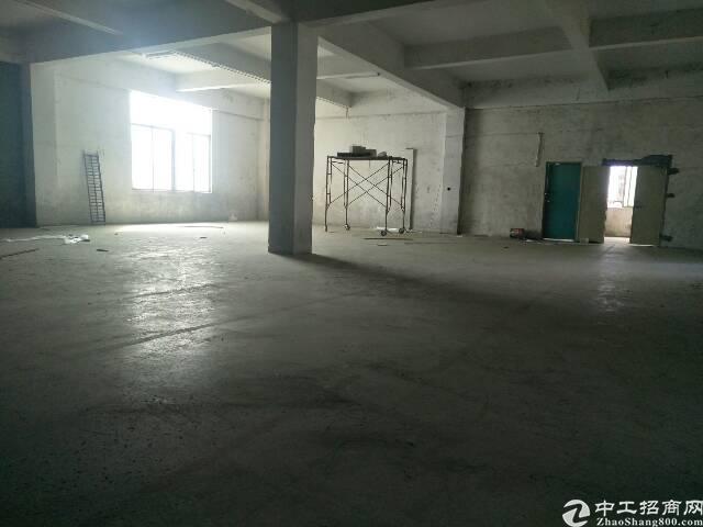 横岗六约一楼、滴水6米1200平方厂房招租-图2