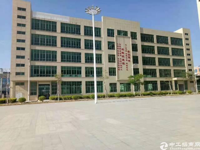 广州超长年限形象超好的厂房业主急售