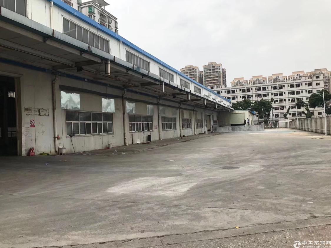 福永10米高钢构独门独院6000平方