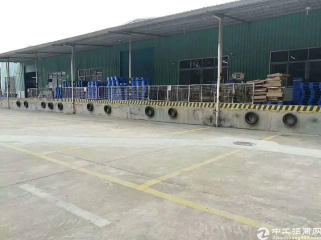 A龙华观澜钢结构物流仓库厂房出租