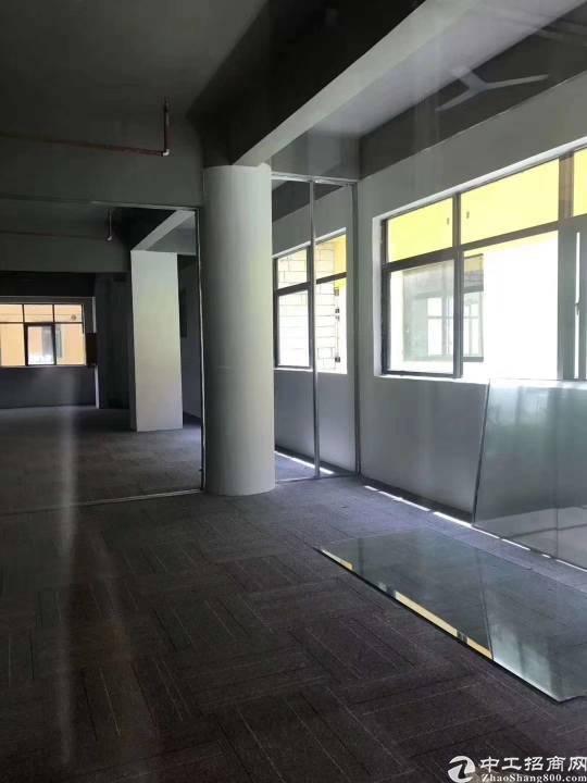 布吉丹竹头地铁站200米简装写字楼