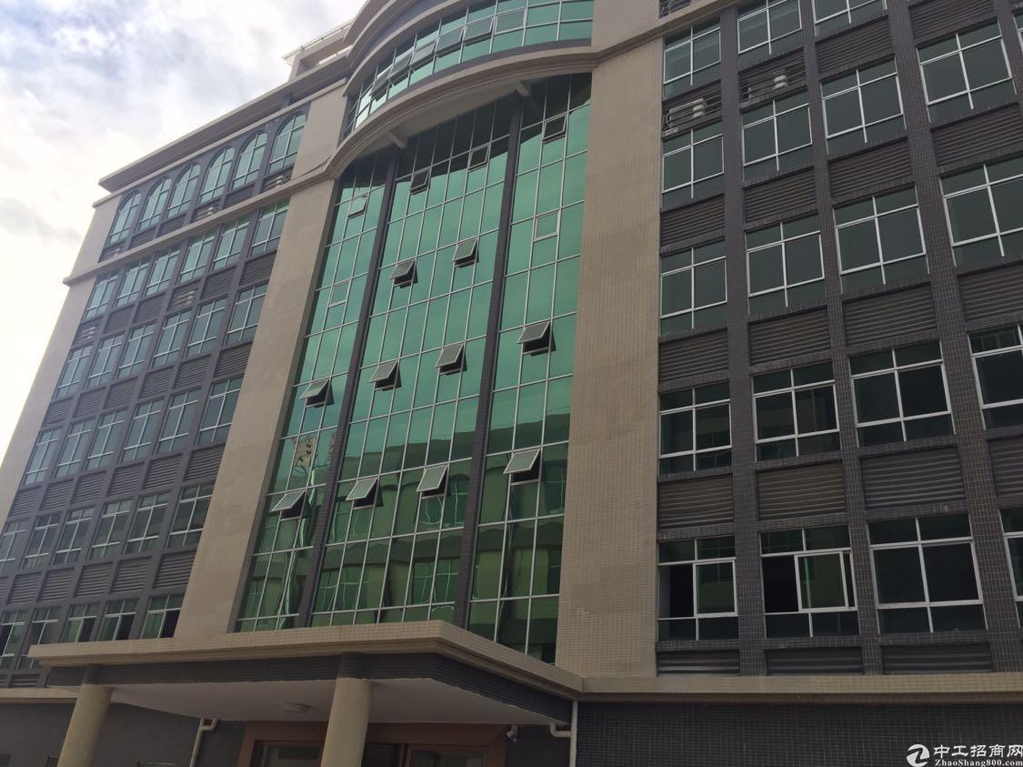 东莞全新厂房出租、大小可租、适合各种行业