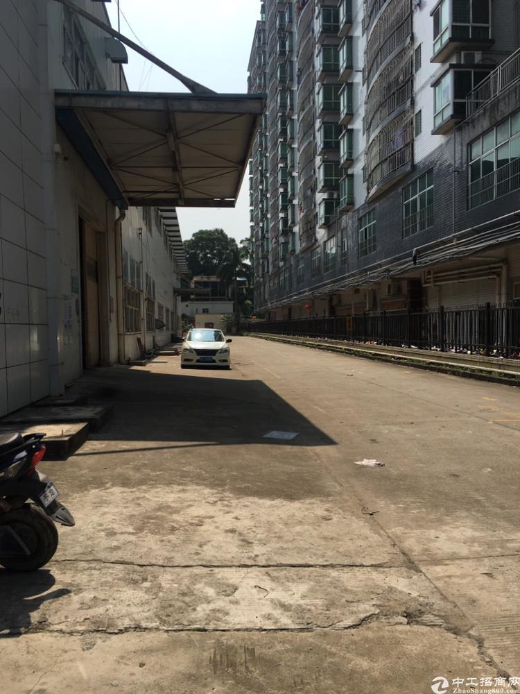 福永107国道边上原房东独门独院大型钢构4000平招租-图3