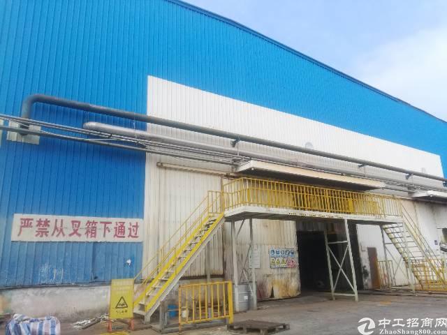 坪山区滴水15米钢结构仓库厂房30000平方出租