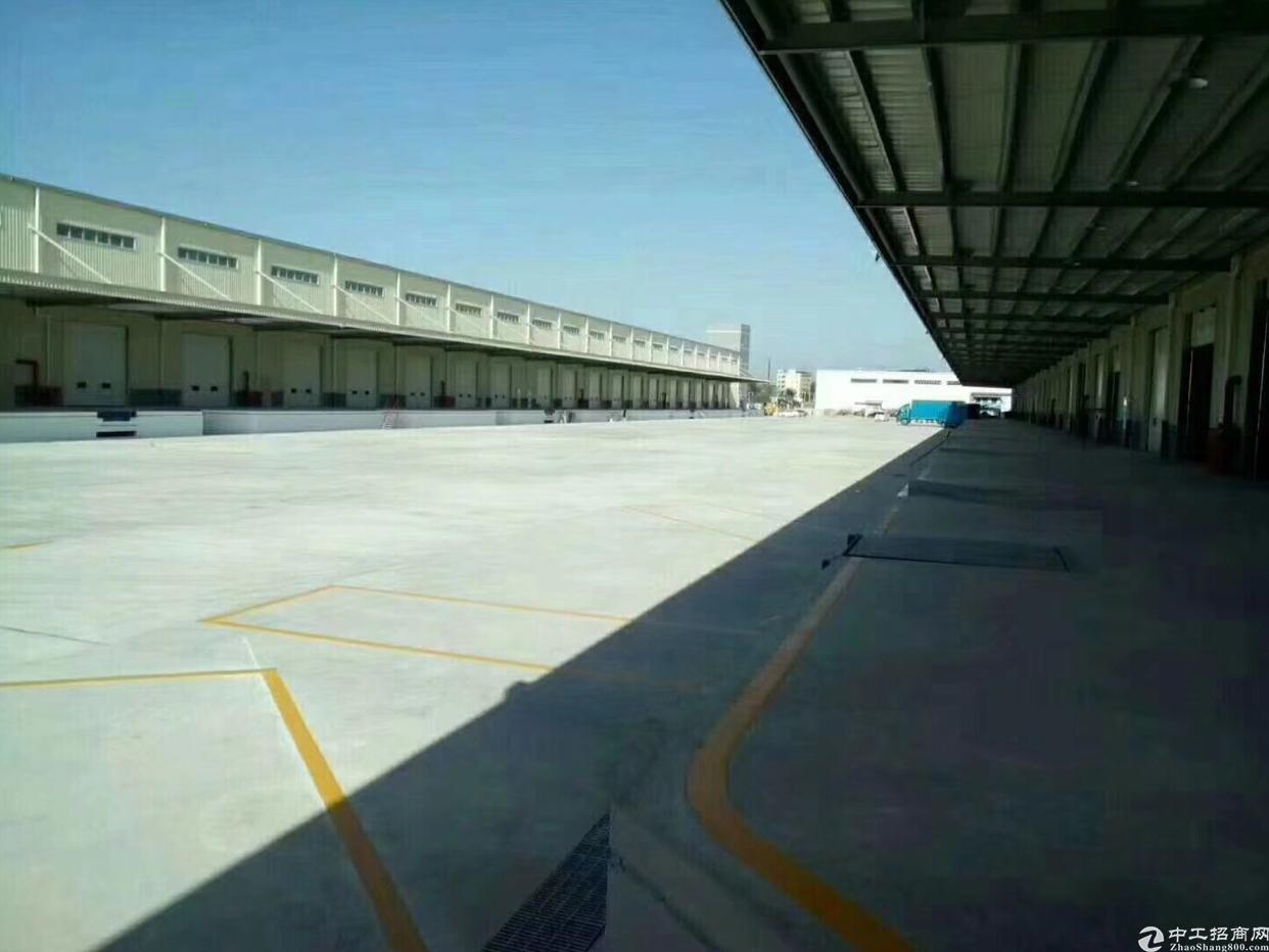 最新出高标物流仓库50000平方米