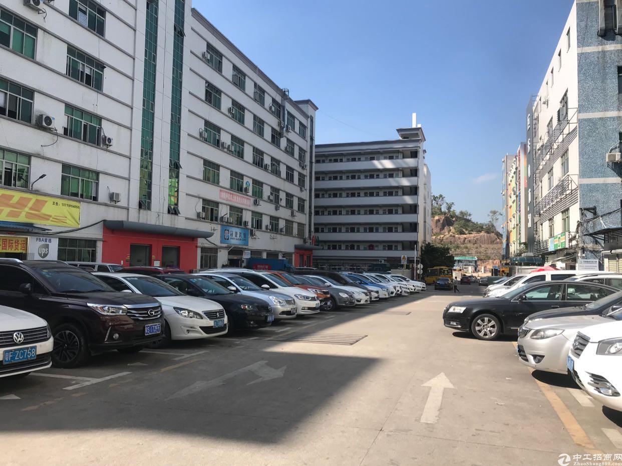 南坑工业区260平招租