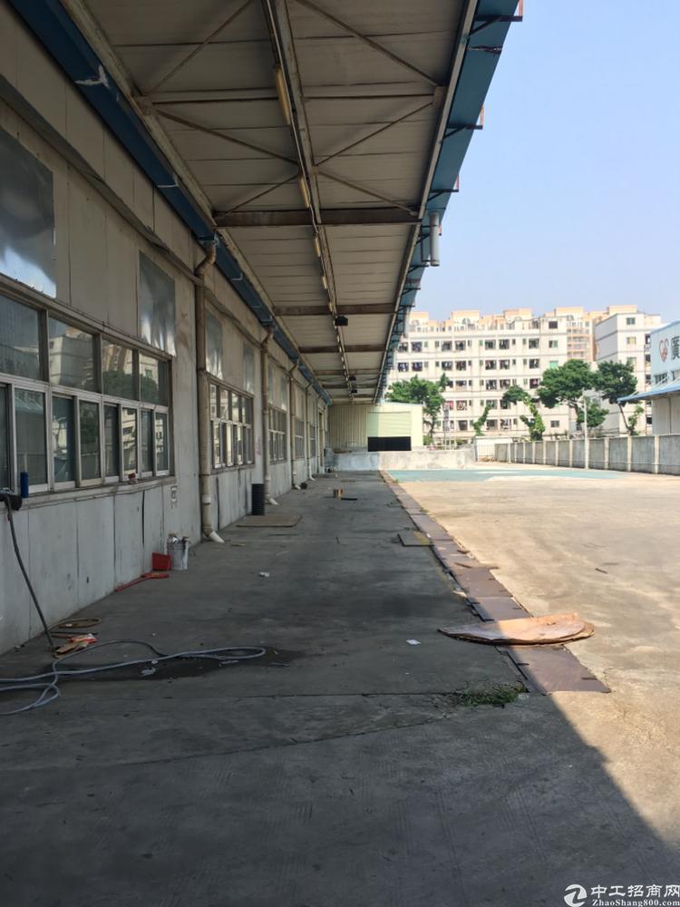 福永107国道边上原房东独门独院大型钢构4000平招租-图4