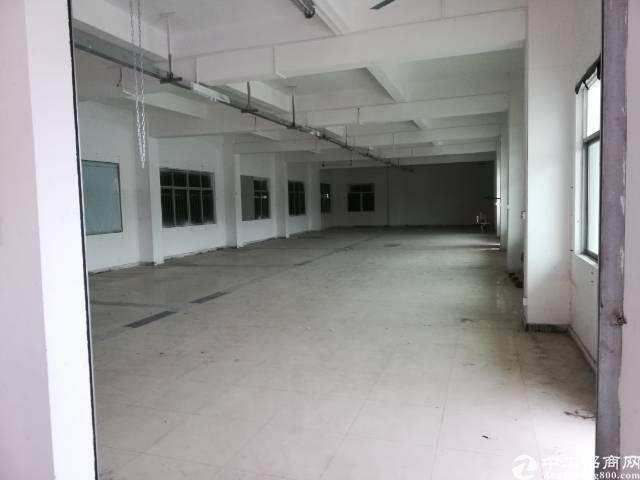常平新出标准楼房1-2楼1400送钢构仓库