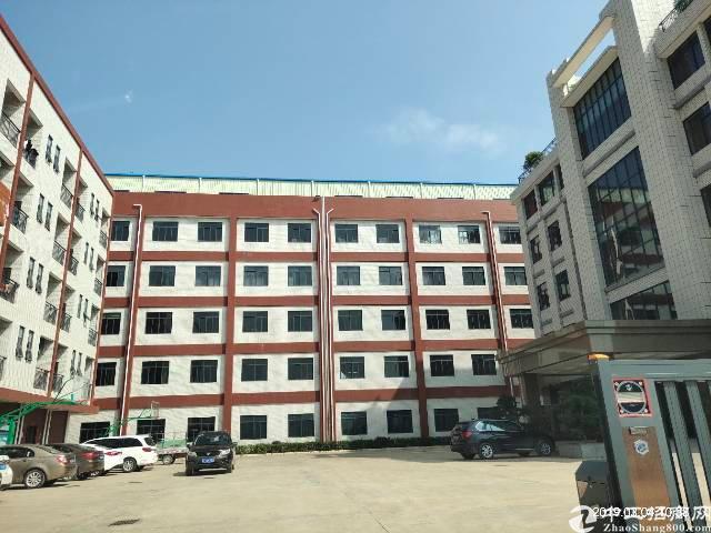 沥林镇英光村四楼带装修厂房4800平方