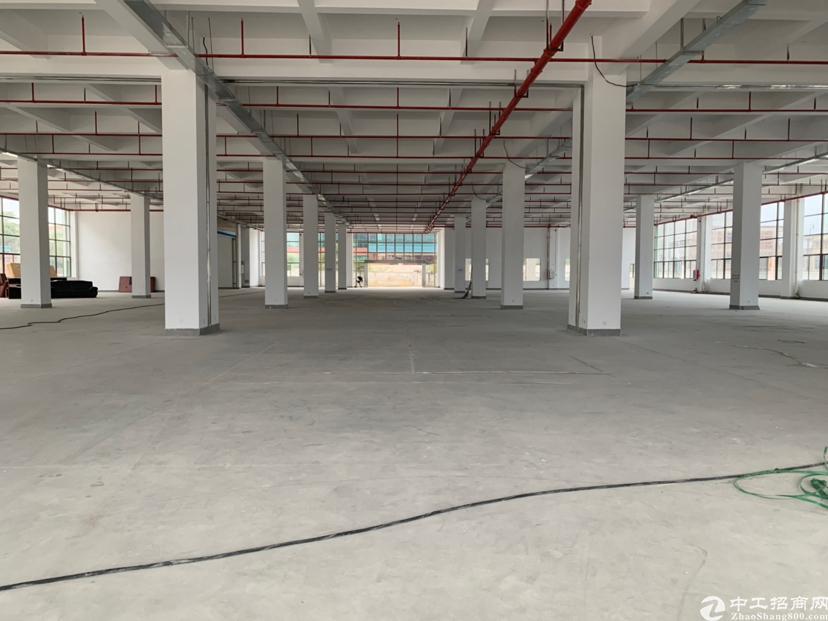 惠阳沙田镇10元全新厂房2300平带喷淋3吨电梯
