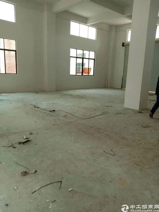 常平全新整栋单边位电楼厂房出售