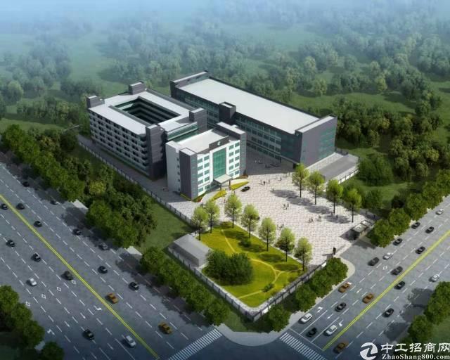 清溪镇带红本原房东独院标准厂房83186平米出租,可分租-图3