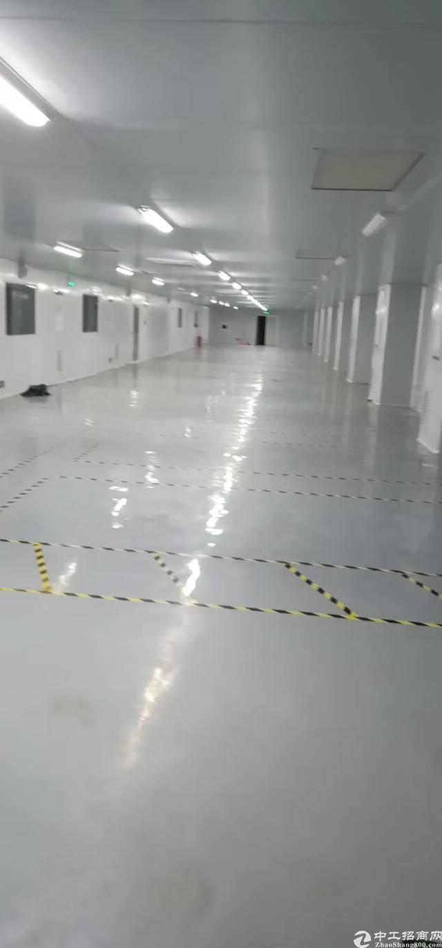 光明长圳精装修楼上500平厂房出租